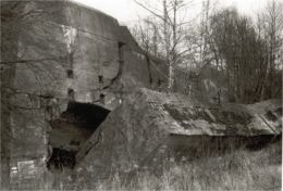 ruins of German bunker at Wolfschanze